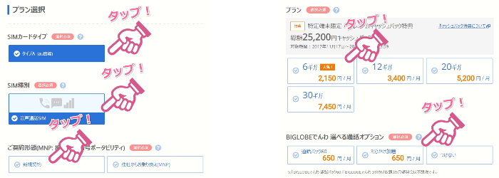 BIGLOBEモバイル新規契約申し込み8